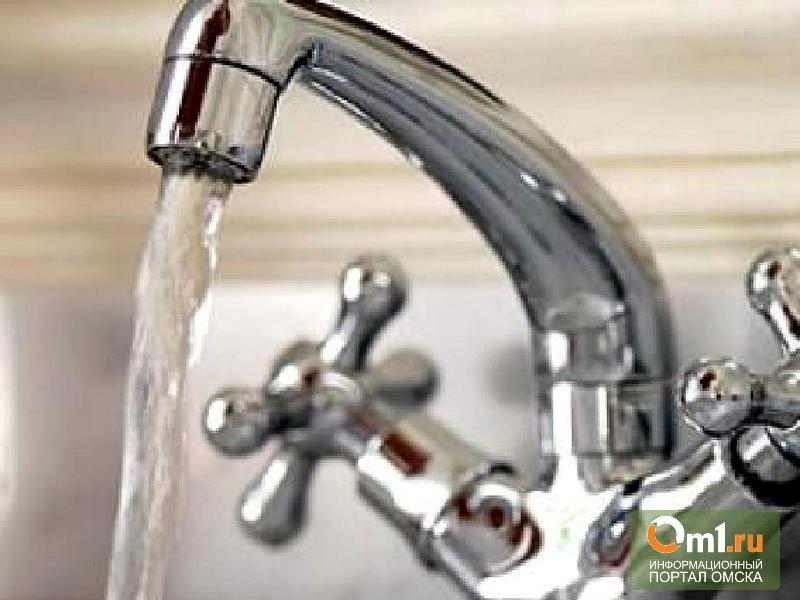 Омские власти взяли на контроль водоснабжение в Ясной поляне