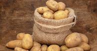 В Омске разыгрывают мешок картошки за репост «ВКонтакте»