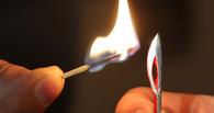 «Омский Левша» смастерил четырехсантиметровый факел Олимпиады-2014