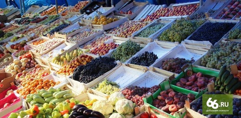 Вместо турецких помидоров: Сирия начала поставлять в Россию овощи и фрукты