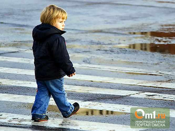 В Омске пешеходы нарушают ПДД чаще водителей