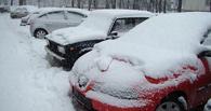 В Омске на «Зеленом острове» в честь Нового года обустроят автопарковку