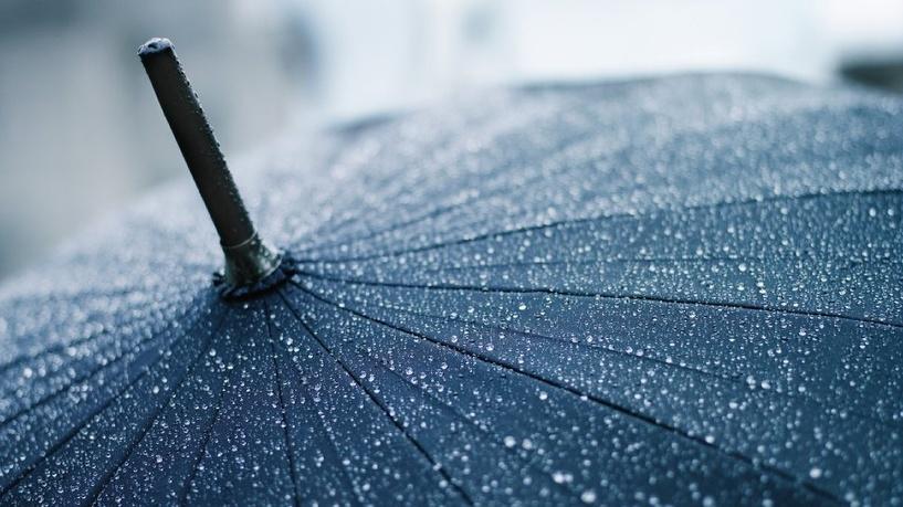 Рюкзак и зонтик: 1 сентября в омских школах пройдет под ливнем