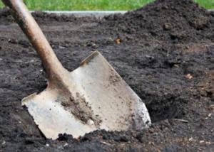 Подопечную Задорожного за продажу мест на кладбищах осудили на 2,5 года условно