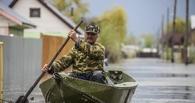 На помощь пострадавшим от паводка в Омской области планируют просить 500 млн рублей