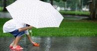 На смену жаре в Омск идут дожди