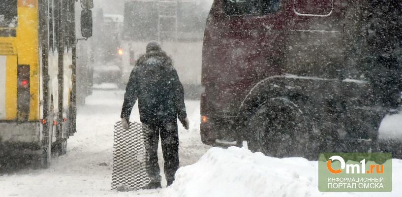 Омичи собирают подписи, чтобы наказать мэра за плохую уборку снега