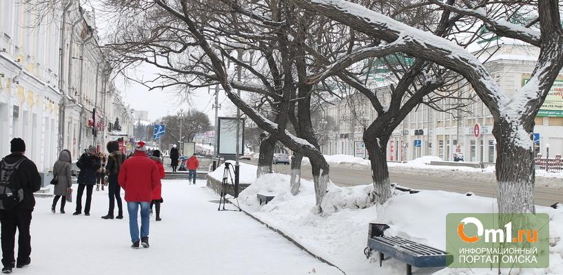 В Омске мосты и пешеходные переходы готовят к зиме