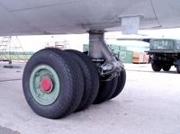 В шасси самолета, приземлившегося в Москве, обнаружили мертвого безбилетника