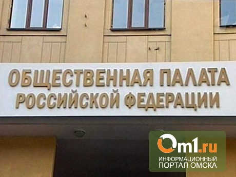 В новый состав Общественной палаты РФ попали «нашисты»