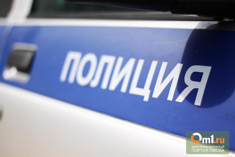 В Омской области малолетних хулиганов поставили на учет