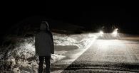 В Омске подросток на «шестерке» сбил свою сверстницу