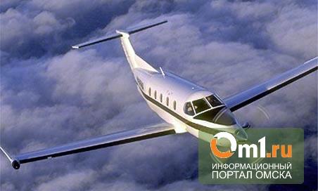 В Омске экстренно сел самолет с ВИПами из Екатеринбурга