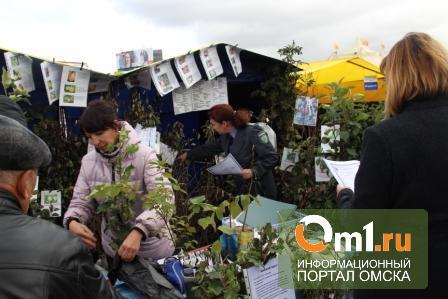 На омской ярмарке «Золотая осень» продавали «нелегальные» семена