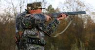 В Омской области за убийство лося и косули браконьеры заплатят 200 тысяч