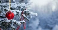 Новый год в Омске начнется с морозов