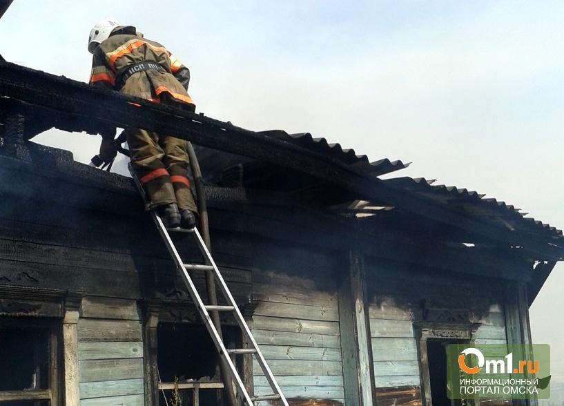 В Омской области при пожаре погибла целая семья