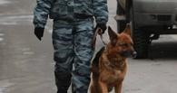 В Омске из-за угрозы взрыва эвакуировали жителей многоэтажки на Левобережье