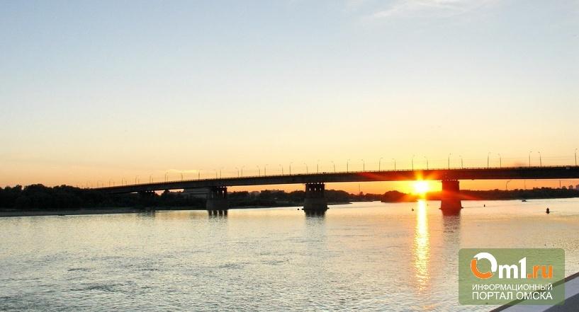 Омич погиб, спрыгнув с Ленинградского моста