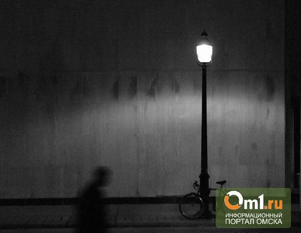 Омская прокуратура потребовала установить фонари у двух школ и детского сада