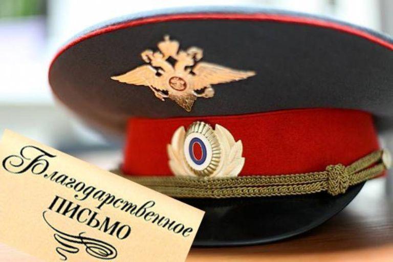 Полиция поблагодарила омичей за предоставление сведений о хозяйке стаффа, который загрыз дворнягу