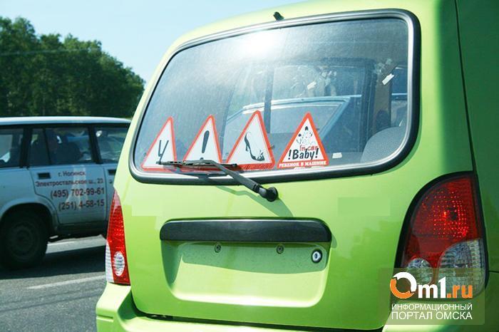 На трассе под Омском автоледи на встречке въехала в машину с полицейскими