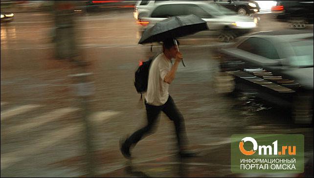В Омске два дня будет бушевать ураган