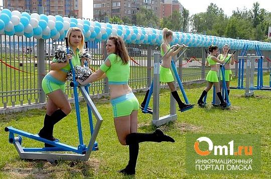 В Омске на Иртышской набережной появятся уличные тренажеры