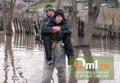 Паводок грозит еще одному селу Омской области