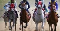 Главный приз Всероссийского конного фестиваля достался омичам