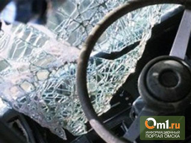 В лобовом ДТП в Омской области погибла молодая женщина