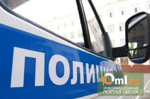 Пропавшая в Омске 11-летняя девочка нашлась у подруги