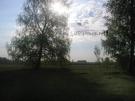 КП «Давыдовский»