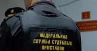 У супругов-бизнесменов из Омска в счет долгов изъяли 220 детских игрушек