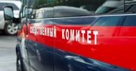 В Омской области пенсионера приговорили к двум годам колонии за совращение 12-летней девочки