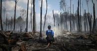 Синоптики: В Омской области повышается угроза возникновения пожаров