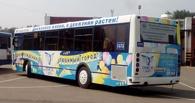 В Омске до аэропорта будут ходить только частные маршрутки