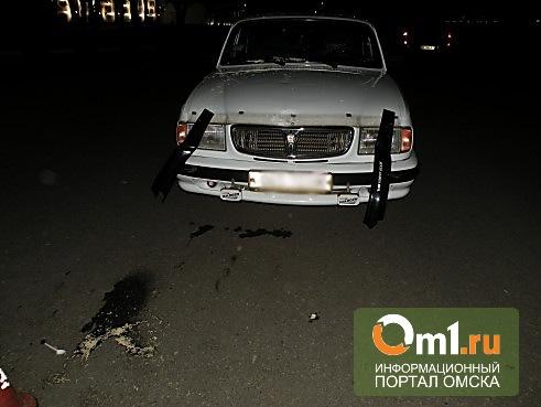 На трассе Омск - Нижняя Омка водитель Волги насмерть сбил пешехода