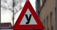 В Омске дорожные полицейские нашли «левую» автошколу