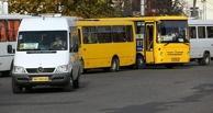 Маршрутчиков-нелегалов будут штрафовать в Омске на 300 тысяч