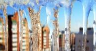 Пережили холода: в Омск идет потепление