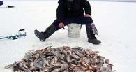 В Омской области спасают рыб на Крутинских озерах
