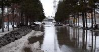 Омичи жалуются на темные и затопленые улицы