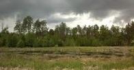 В Омской области в болоте найдено тело мужчины
