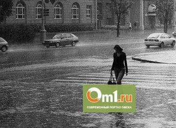 Зима не придет в Омск с началом ноября