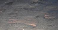 Мэрии Омска рекомендовали, как избежать «позорища» с битым кирпичом на дорогах