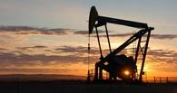 «Пусть нас пока оставят в покое». Иран назвал условия переговоров о заморозке нефтедобычи