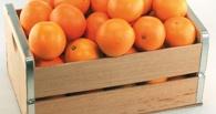 В Омске мужчину подозревают в краже двух ящиков с фруктами