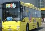 Желтые автобусы