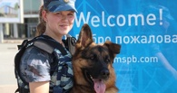 Сегодня кинологи омской полиции отмечают профпраздник